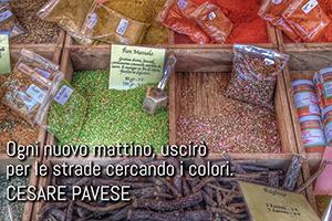 Paola Grassi – Colori