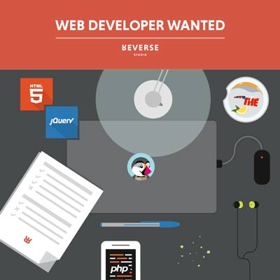 web_developer_reverse