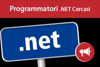 Lavoro per Programmatore .Net