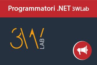 Programmatori .Net per 3WLab