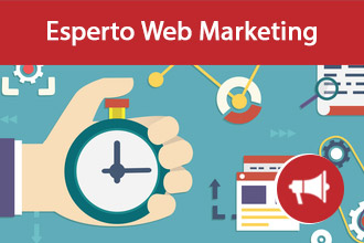Esperto Web Marketing Cercasi